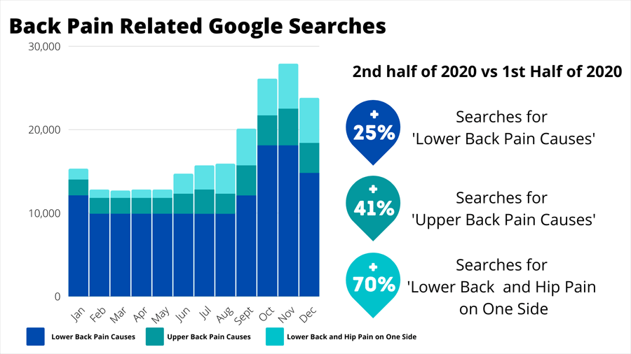 Searches for Back Pain in 2020